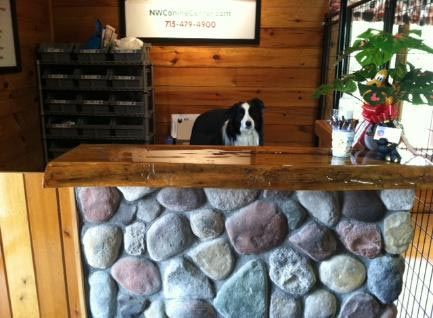 Northern_Wisconsin_Canine_Center_photo-1-433x318