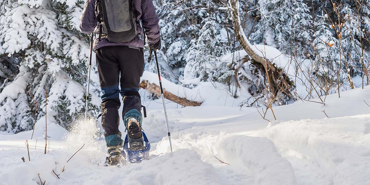 Cross Country Skiing, Snowshoeing And More